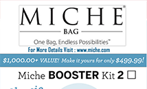 Miche Booster Kit