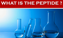 What is peptide